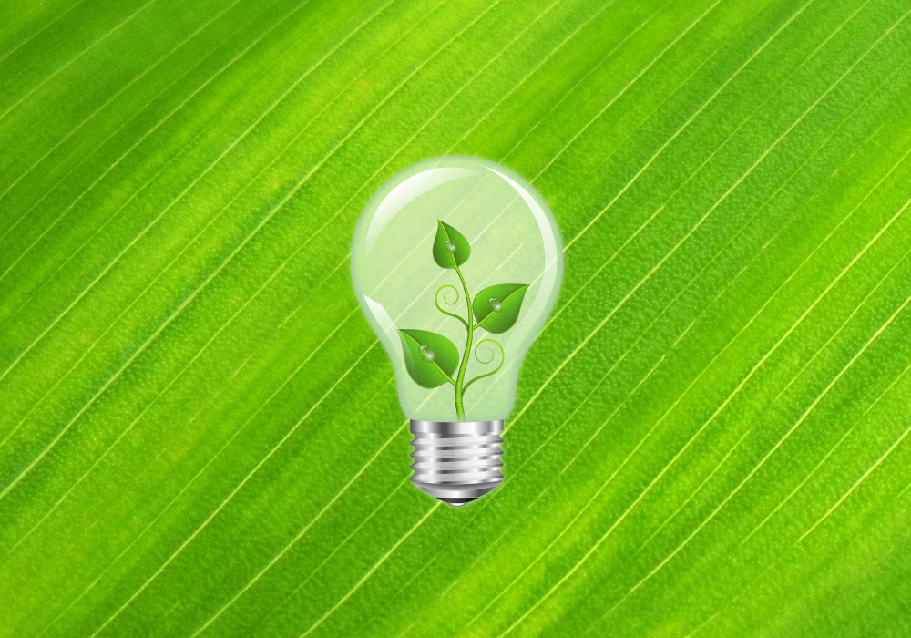 green background with a lightbulb in the center. Inside the lightbulb is a plant to represent green energy